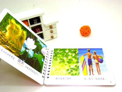 儿童早教卡 启蒙识字卡 高档立体封面 幼儿学习口袋书